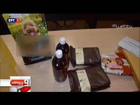 Κύκλωμα αναβολικών: Τα διακινούσαν σε συσκευασίες μπισκότων και σκυλοτροφών | 7/11/18 | ΕΡΤ