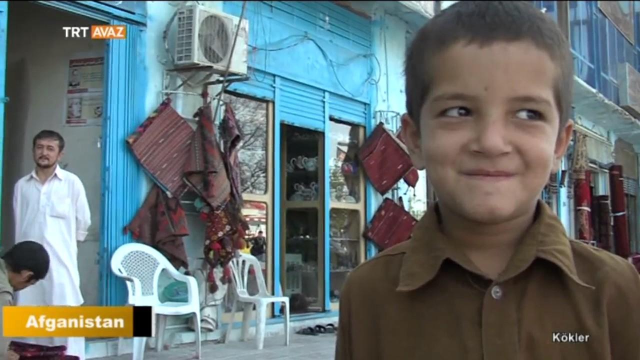 Afganistan'da Yaşayan Türkler - Kökler