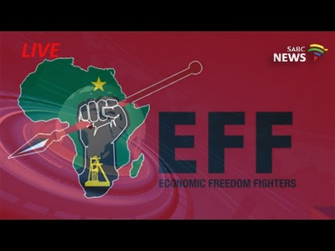 EFF media briefing following 3-day National Plenum (видео)