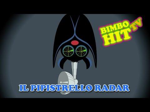 Il Pipistrello Radar - Canzone Per Bambini