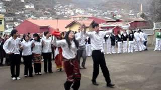 gümüşhane anadolu sağlık meslek lisesi nevruz bayramı kutlaması
