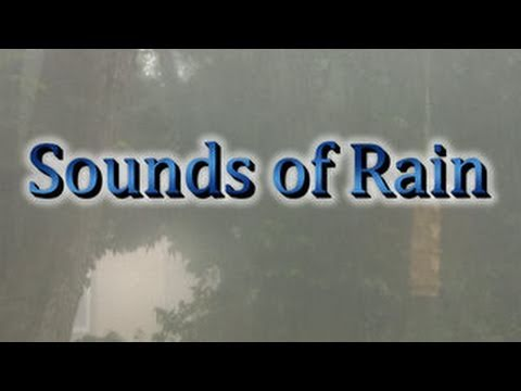 rain - MP3 Downloads of many of my videos at http://www.texashighdef.net Taped in Austin Texas.