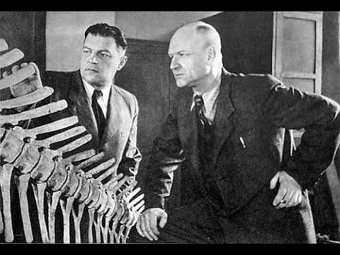 Смотреть онлайн: Запрещенная палеонтология. Из наследия И.А.Ефремова. Александр Белов