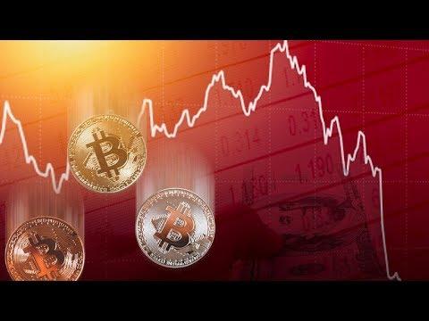 Разгромный Биткоин прогноз от криптовалютного быка - DomaVideo.Ru