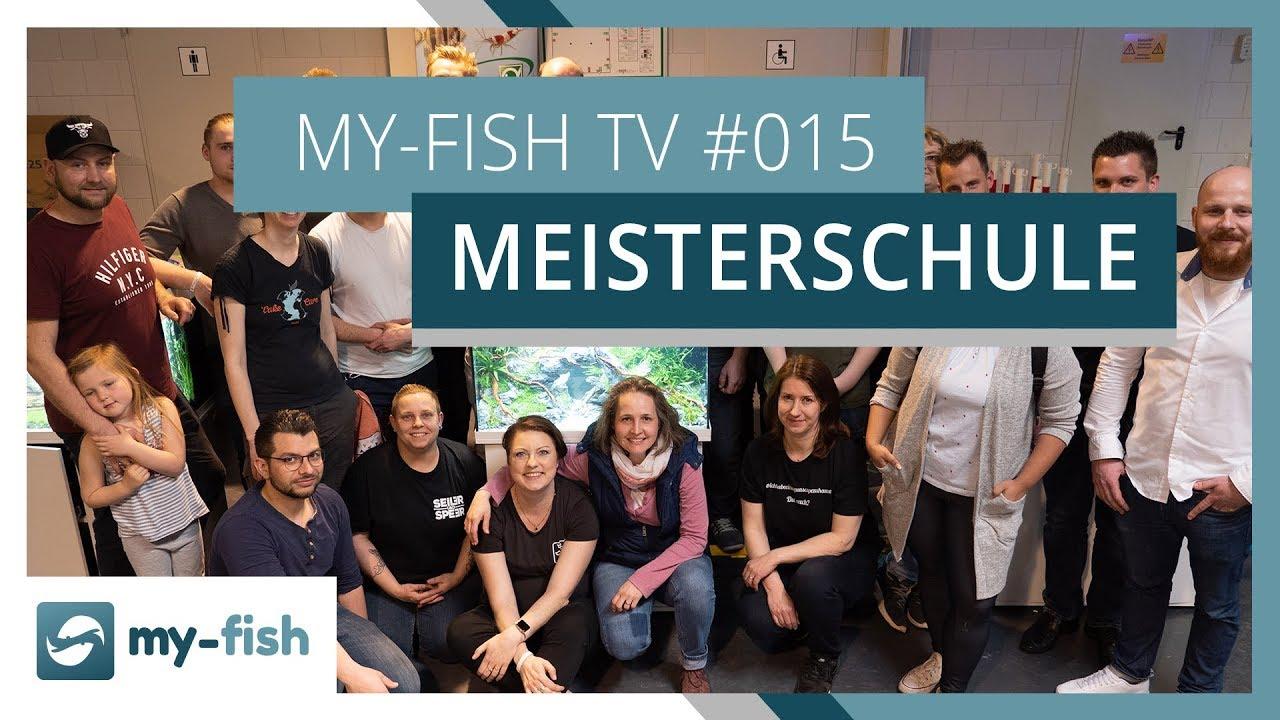 my-fish TV - Deine Nr. 1 Anlaufstelle für alle Themen rund um die Aquaristik 49