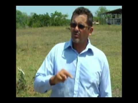 Trabalho da Cooperideal no Estado do Amazonas - município de Autazes