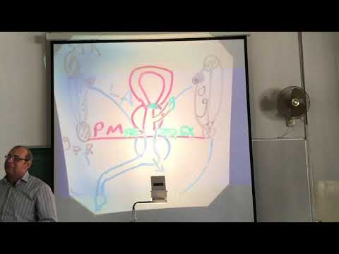 UGS Anatomy Lecture #6 - Dr Ahmed Salman