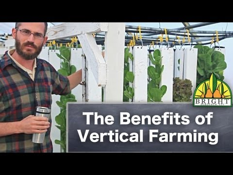 The Benefits of Vertical Farming (with Aquaponics)