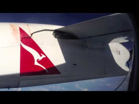 VIDEO: Snake clings to plane wing on Australian flight