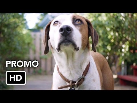 "Downward Dog (ABC) ""Protect Humans"" Promo HD"