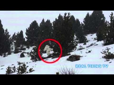Strange Creature Caught on Cam – Could it be the Yeti?