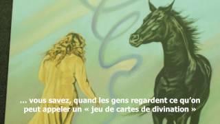 Un entretien exclusif avec Linda Kohanov sur la Voie du Cheval et les archétypes équins