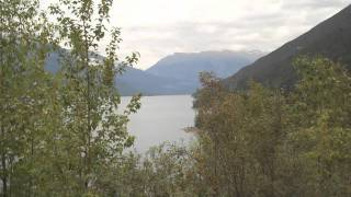 A fantastic spot not far from Vagabond Lodge at Kicking Horse is Kinbasket Lake on the Columbia River. It is about an hour drive to Bush Harbour. And from th...