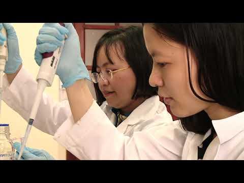 Tác phẩm: Nano vàng và những cuộc thử nghiệm mờ ám (1)