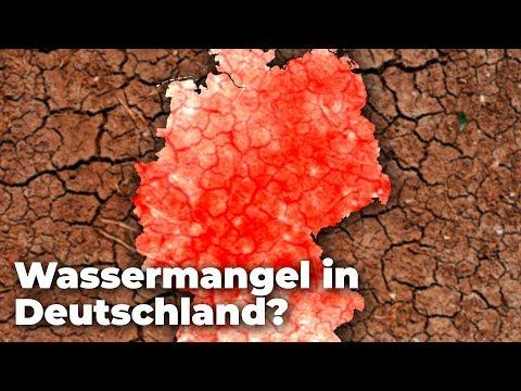 Wird das Trinkwasser in Deutschland Knapp? - Folgen der Hitzewelle Sommer 2019