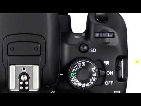 Mr. E's DSLR Tips – Stop Out of Focus Shots with your DSLR