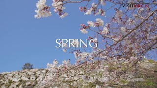 Kochi Japan  City new picture : The blessings of nature - spring PV- VISIT KOCHI JAPAN