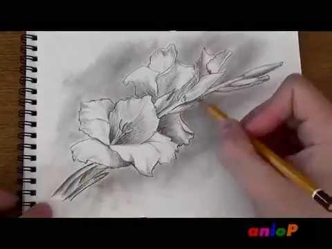 Мастер классы учимся рисовать карандашом - BM-motors.ru