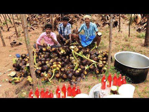Fresh toddy palm fruit juice | Palmyra fruit juice prepared in my village | village food taste