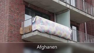 Video Asylwahnsinn in Hamburg - Es läuft nach Plan! (Kurzfassung) MP3, 3GP, MP4, WEBM, AVI, FLV Oktober 2018