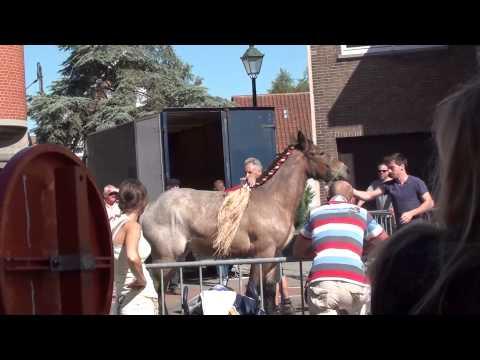 Schellebelle Potjesmarkt - 23 juni 2014