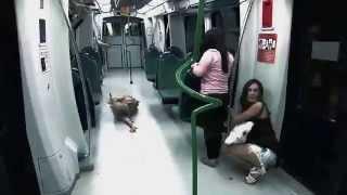 Broma Pesada - Zombies en el metro Video