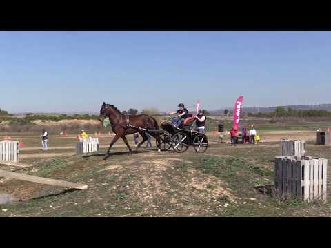 I Fase Cto Navarro Enganches Obstáculos 240319 Video 2