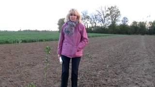 Či majú mladí ľudia záujem farmárčiť..