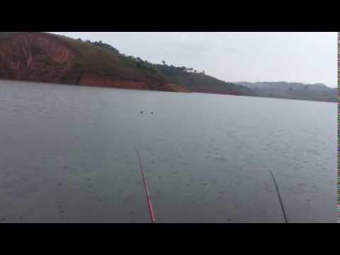 Pesca em Igarata sem peixe