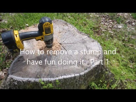 Easy Way to Remove Tree Stumps - Part 1
