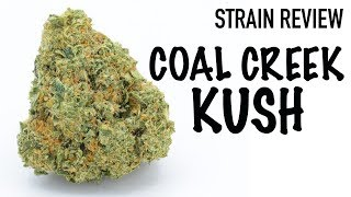 Strain Review: Coal Creek Kush by The Cannabis Connoisseur Connection 420