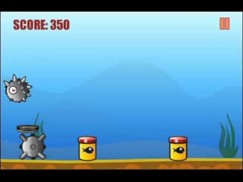 Video of Blowfish