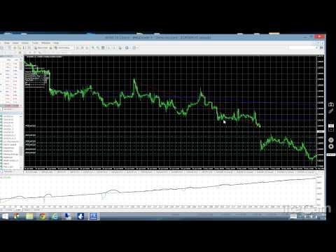 How to make my own forex robot