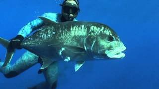 With up to 80M visability, Spearfishing specific FADS and Pelargic species of world record standards you need to check out the...