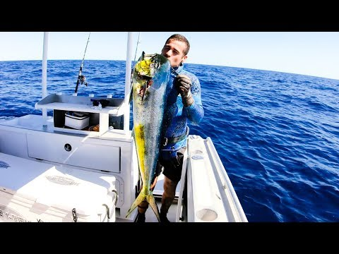 WHAT SPEARFISHING GEAR WE USE mahi catch clean and cook - Ep 77 - Thời lượng: 16 phút.