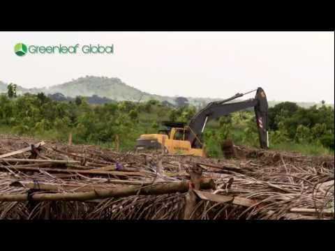 GREEN INVESTMENT VIDEO