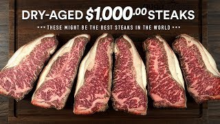 Video I Dry-Aged a $1,000.00 WAGYU STEAK MSB7 at home! MP3, 3GP, MP4, WEBM, AVI, FLV Agustus 2019
