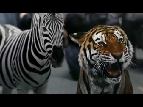 Zoo season 2 kill count