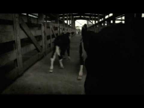 8 Foot Sativa - Sleepwalkers (censored version) online metal music video by 8 FOOT SATIVA
