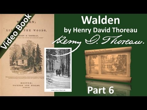 Part 6 - Walden Audiobook by Henry David Thoreau (Chs 16-18)