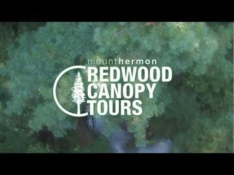 video:Mount Hermon's Redwood Canopy Tours