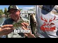 CATCHING CAT FISH AND PERCH