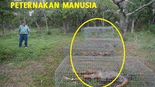 Video FREEMAN RANCH, peternakan manusia pertama di dunia, NGERI MP3, 3GP, MP4, WEBM, AVI, FLV November 2018