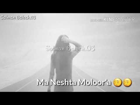 Video Balochi Whatsapp Status Video |Safar Hanga Dooren| Saleem Amin Song download in MP3, 3GP, MP4, WEBM, AVI, FLV January 2017