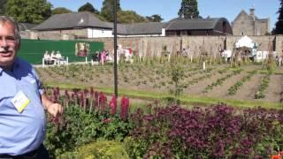 #429 Gartenshow Bloom (Irland, 2011) - Kartoffeln und Erdbeeren