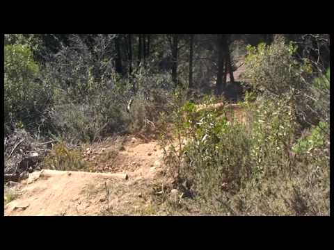 Downhill em São Brás de Alportel - Algarve