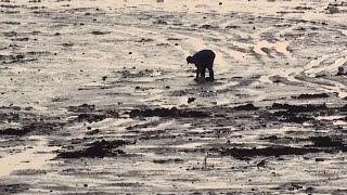 World's Highest Tides