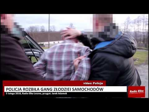 Wideo1: Policja rozbiła gang złodziei samochodów