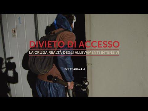 Divieto di Accesso - La cruda realtà degli allevamenti - Italia