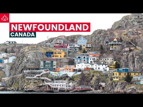 Canada Road Trip: Best Things To Do In Newfoundland